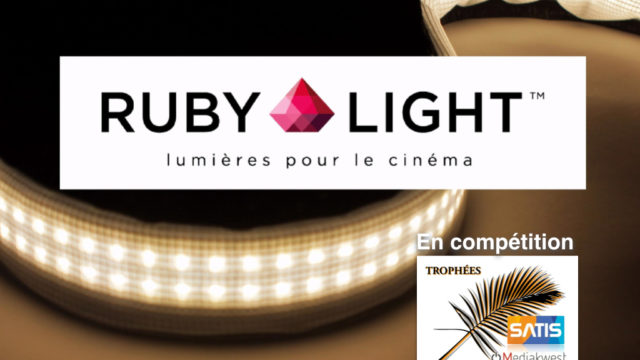 Rubilight Trophees.001.jpg