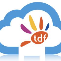 TDF Cloud_OK.jpeg