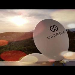 WildmokaBalloon.jpeg