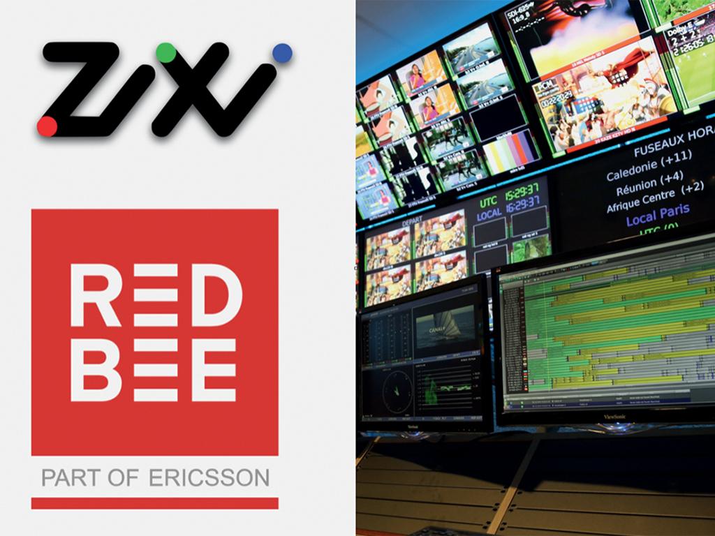 Zixi_Red_Bee_sV2.jpg